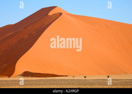 Dune in sossusvlei Namib desert Namibia - Stock Photo