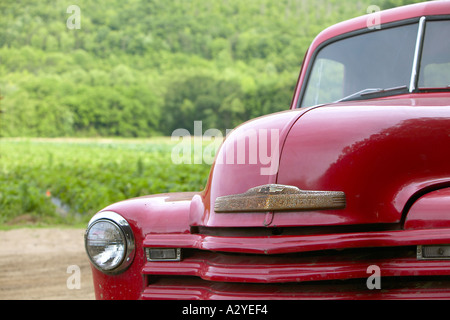Red 1950 s Chevrolet model 3100 stepside pickup truck along dirt road North Carolina USA - Stock Photo