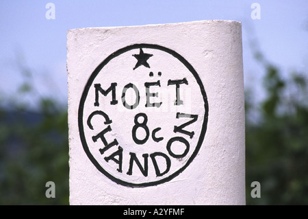 Moet et Chandon Vineyard France - Stock Photo