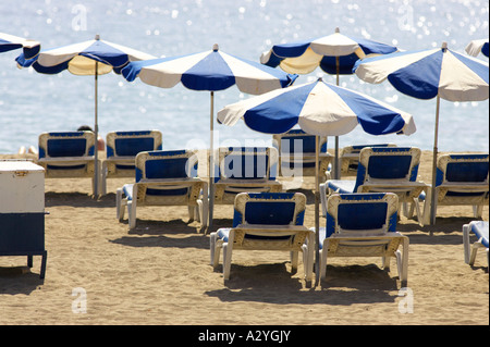 ... blue and white beach umbrellas and recliners on the beach playa de las americas Tenerife Canary & Sun recliners with umbrellas on sandy beach Mauritius Stock Photo ... islam-shia.org