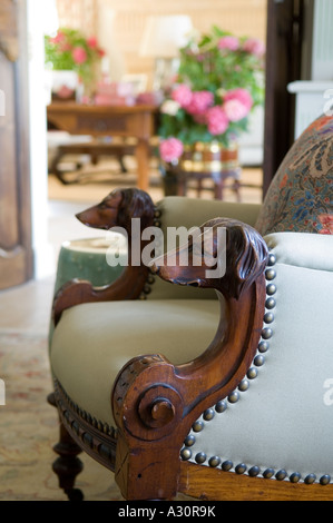 Close up of dogs head detail on armchair - Stock Photo