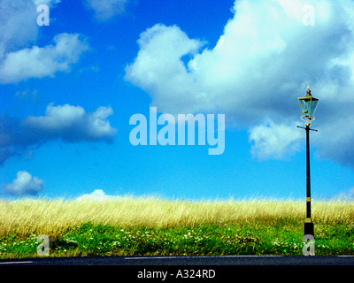 victorian gas lamp on malvern common with a bright blue summer sky in worcestershire england 2005 - Stock Photo