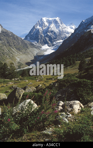 Mont Collon - Stock Photo