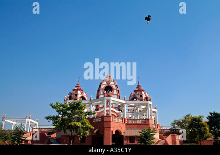 Eagle flying in the clear blue sky over ISKCON temple - Stock Photo