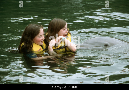 Two girls are swimming in a marina as a dolphin swims up and nudges them surprising the little girl at Theatre of - Stock Photo