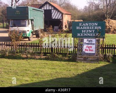 Easton harriers hunt Suffolk England - Stock Photo