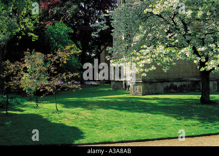 The garden at Wadham College, Oxford University, Oxfordshire Stock ...