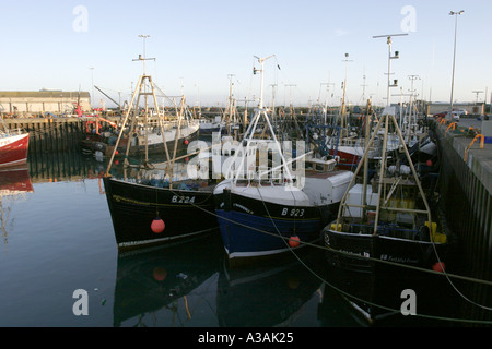 Commercial fishing fleet boats berthed in the port of cape for Jubilee deep sea fishing
