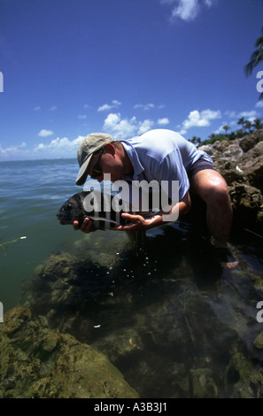 A MAN CATCHES AND RELEASES A FISH CAPTIVA ISLAND FLORIDA - Stock Photo