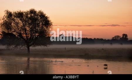 Sunrise over Leg of Mutton Pond Bushy Park London England - Stock Photo