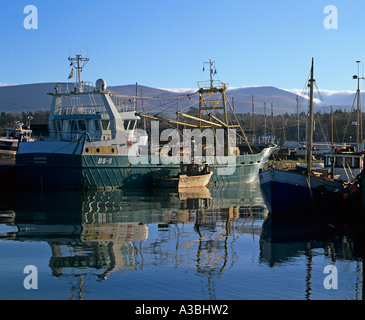 PORTH PENRHYN GWYNEDD NORTH WALES January Some of the fishing boats moored in the Port - Stock Photo