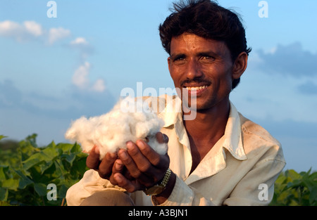 Farmer in Guajarat India grows cotton that he sells under the Fairtrade scheme to Marks and Spencer - Stock Photo