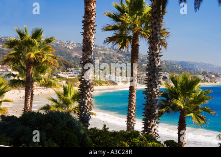 Palm trees frame Main Beach at Heisler Park in Laguna Beach California USA - Stock Photo