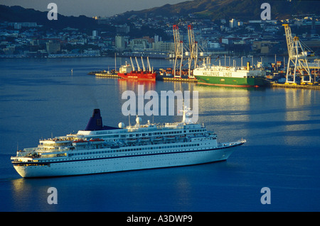 Cruise liner Norwegian Star approaching port at sunrise, Wellington, New Zealand, freighters in background - Stock Photo