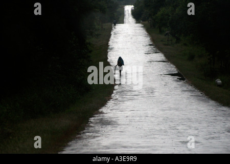Sri Lanka, country road stretching into distance after rain, woman walking silhouetted against wet surface