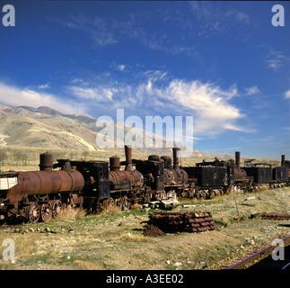 Rusting trains - Stock Photo