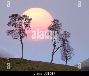 GB - SCOTLAND: Winter Sunset at Glen Lochsie - Stock Photo