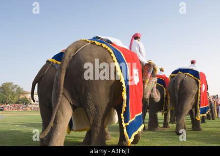 Rear view of three men riding elephants at an elephant festival, Jaipur, Rajasthan, India - Stock Photo