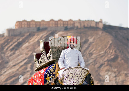 Portrait of a mature man riding an elephant in front of a palace, Jaipur, Rajasthan, India - Stock Photo