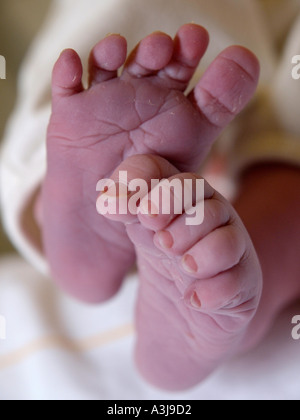 Little wrinkled baby feet of a newborn child photographed about 15 minutes after birth - Stock Photo