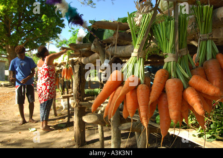 Road side market by the track leading to Mt Yasur volcano on Tanna in Vanuatu - Stock Photo