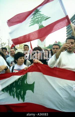 collect together beirut lebanon