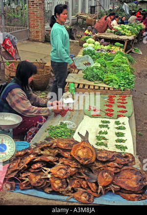 Women in the general outdoors market sell dried fish and fresh vegetables, Luang Prabang, Laos. DM2 - Stock Photo