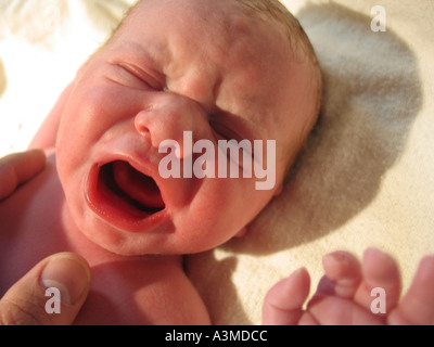 Closeup of newborn baby with father holding his chest only minutes old - Stock Photo