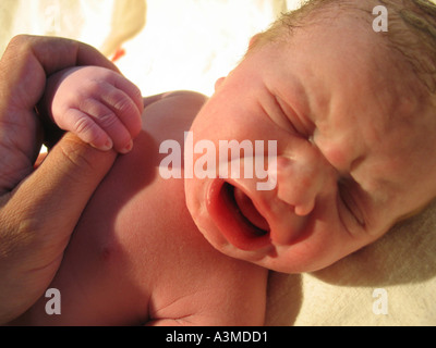 Closeup of newborn baby holding father s thumb hand only minutes old - Stock Photo