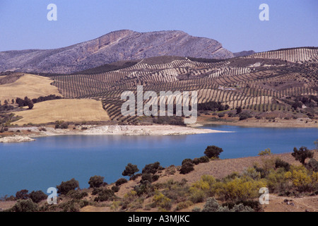 The Andalucian Lakes near Antequera. - Stock Photo