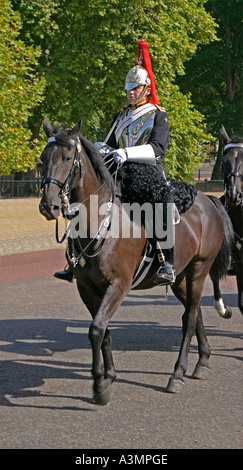 A mounted soldier from the Blues and Royals regiment which forms part of the British Household Cavalry - Stock Photo