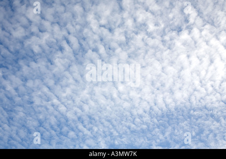 Blue sky covered with fluffy white clouds - Stock Photo