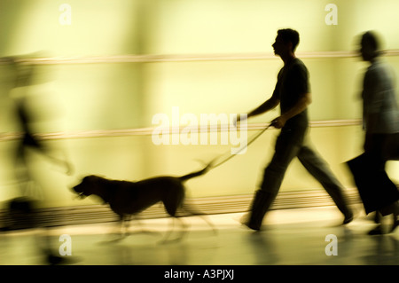 Silhouette of a man with a dog on a leash, Berlin, Germany - Stock Photo