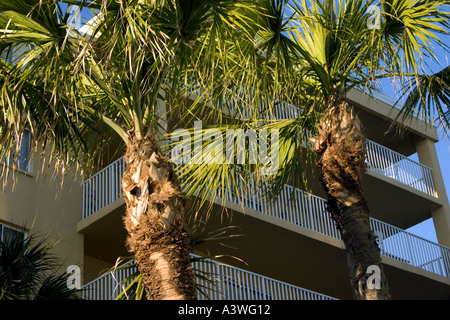 Palm trees and condominiums which overlook Gulf of Mexico. Indian Shores, Tampa Bay Beaches, Florida USA - Stock Photo