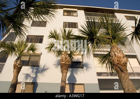 Palm trees casting shadows on the condominiums which overlook Gulf of Mexico. Indian Shores, Tampa Bay Beaches, - Stock Photo