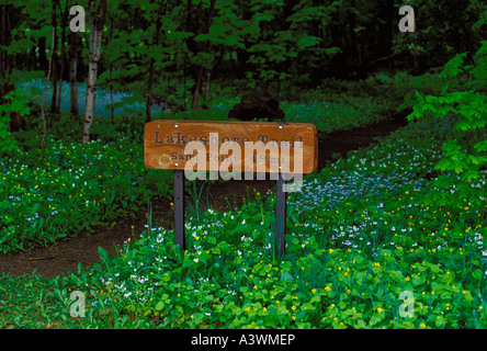 A SIGN FOR THE LAKESHORE TRAIL AT MINERS CASTLE WITH SPRING WILDFLOWERS IN PICTURED ROCKS NATIONAL PARK NEAR MUNISING - Stock Photo