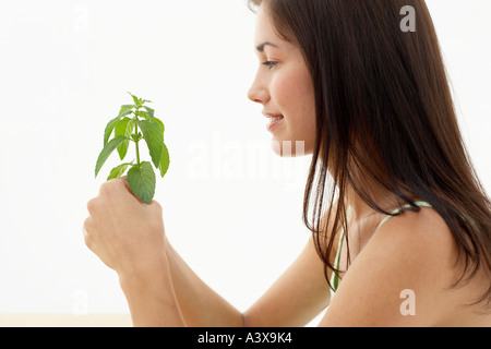 A young woman holding a stem of basil leaves - Stock Photo