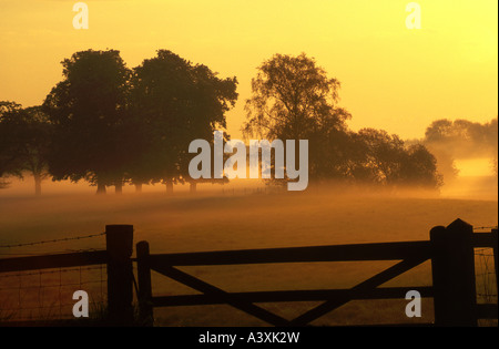 Early Morning Mist in Fields, Cheshire, England, UK - Stock Photo