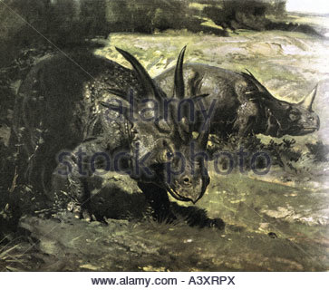 aeon, animals, saurian, dinosaur, Monoclonius and Styracosaurus, oil painting by Zdenek Burian (11.2.1905 - 1.7.1981), - Stock Photo