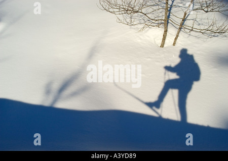 Shaddow of cross country skier in the snow int the cross country ski run - Stock Photo