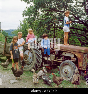 Children on holiday playing a game on an old Massey Ferguson tractor with chickens ducks in a rural garden in Carmarthenshire, - Stock Photo
