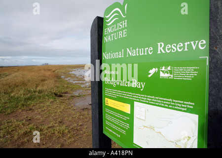 Bridgwater Bay nature reserve with Hinkley Point nuclear power station in background, Somerset UK. - Stock Photo
