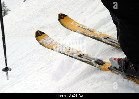 Skiing in the Canadian Rockies; skier getting ready to go - Stock Photo