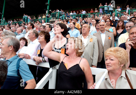A blonde woman cheers her horse on in the crowded grandstand at Brighton races - Stock Photo