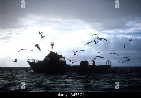 A motor fishing vessel off Kaikoura Marlborough South Island New Zealand - Stock Photo