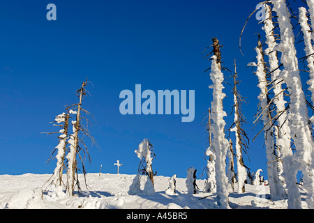 Winter landscape on a mountain named Lusen 1373 m - Stock Photo