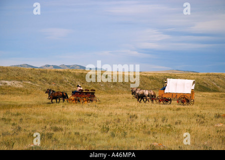 Cowboys sitting in wagons - Stock Photo