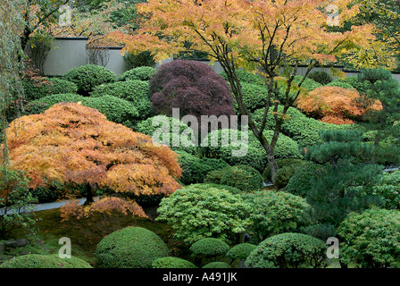Intensely colourful maple foliage in a Japanese garden during Autumn. - Stock Photo