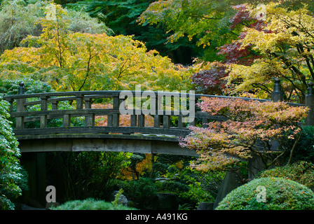 Autumn colours and a strolling bridge in a Japanese garden - Stock Photo