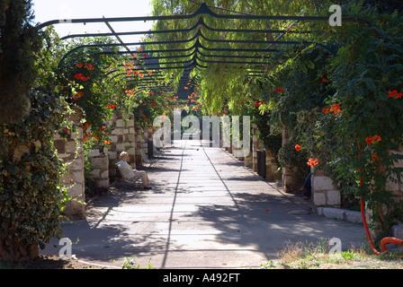 View of city park near Rue Place Espace Massèna Massena Vieux Old Nice Côte D'Azur Cote D Azur Southern France Europe
